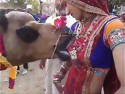 Lovely Turkina Woman Gets Eaten